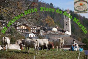 Mostra fotografica Fiero di Son Martin 2016 Casteldelfino